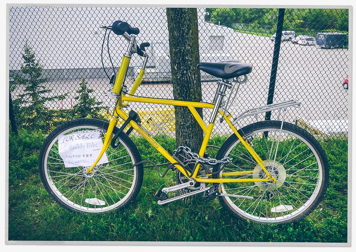 Buddy Bike For Sale