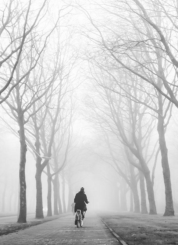 Morning Solitude