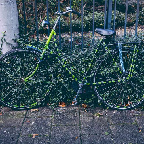 Bicycle hidden in leaves