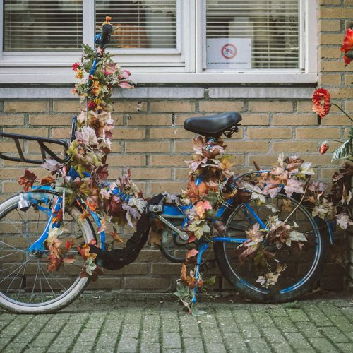 Decorated bicycle in leaves