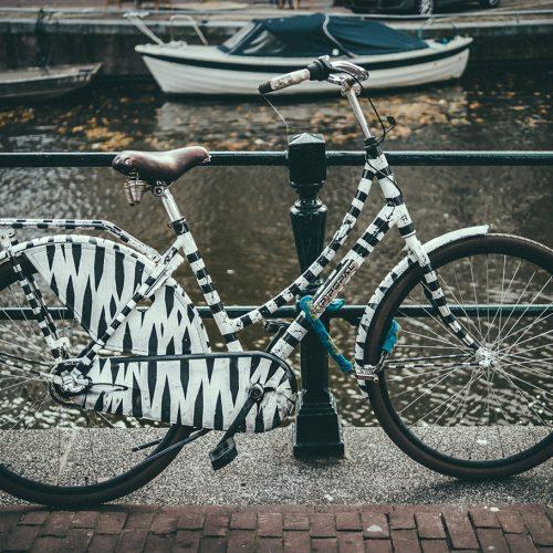Popal Bike with zebra colors