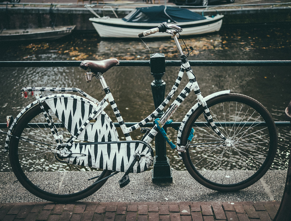 Zebra Bike