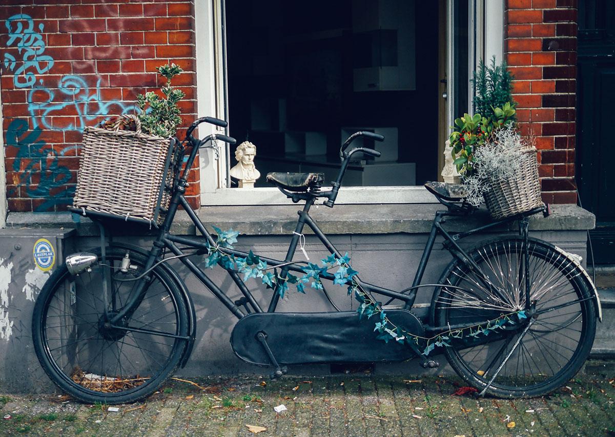 Beethoven's Bike