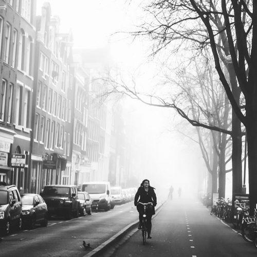 Fog Days