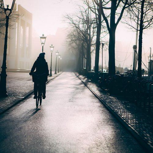 Morning Stranger