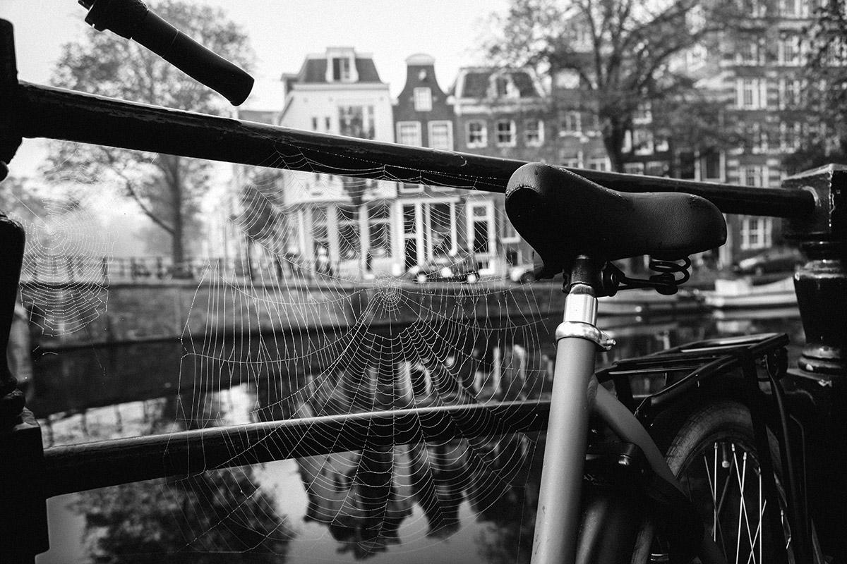 Web of Bikes