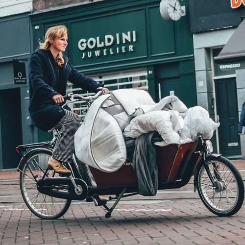 Moving with a Bakfiets
