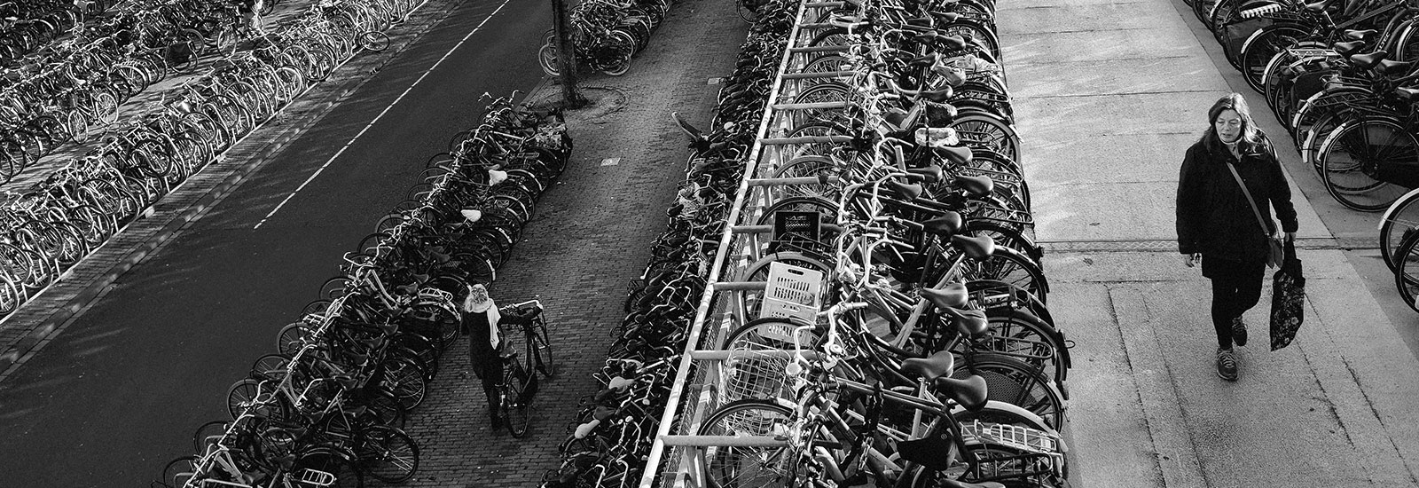 The Top Ten Bicycles of Amsterdam
