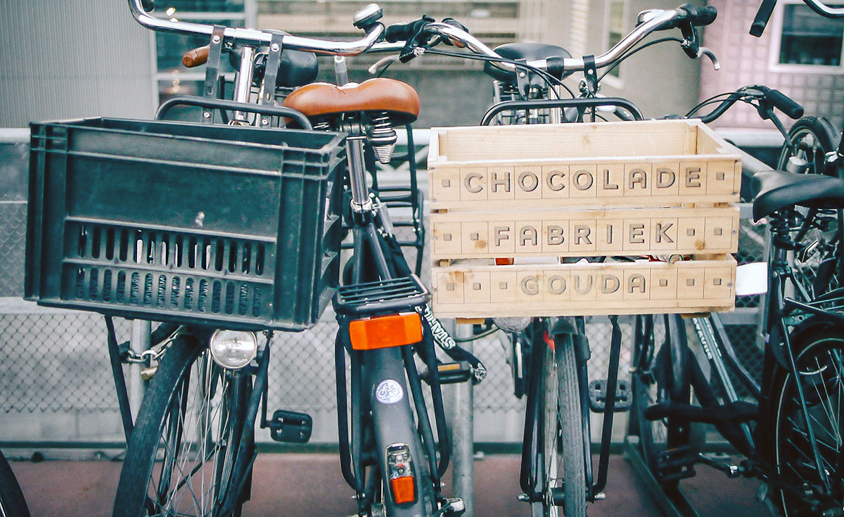 How to choose a bicycle basket
