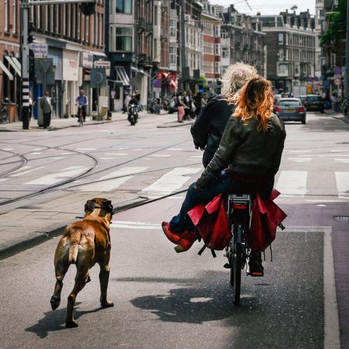 Double riding with a dog