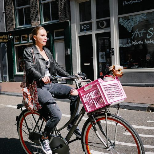 Girl biking with Dog in Amsterdam